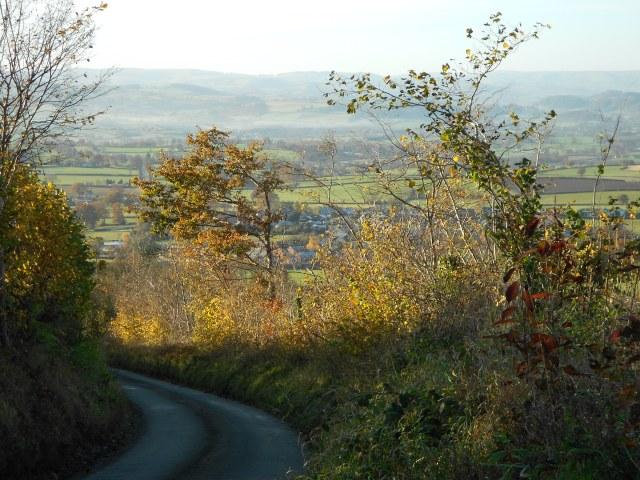View from near the borderland garden