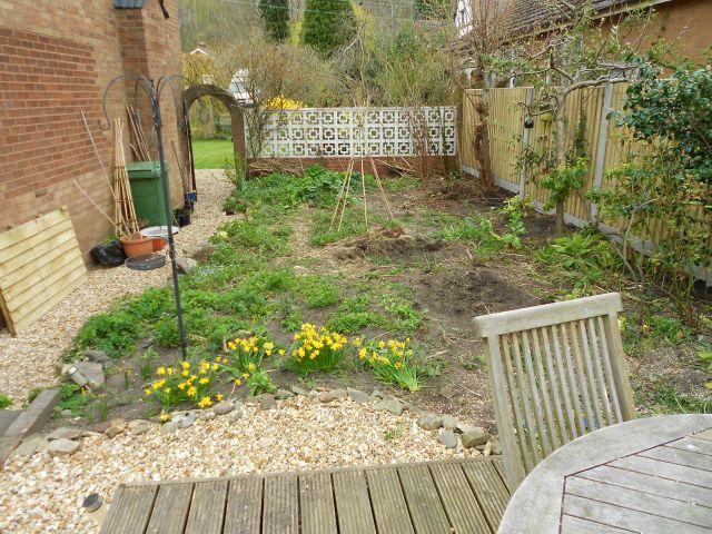 DSCN4623 garden on 260413