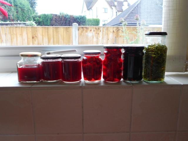 DSCN5320 jam and vinegars 050813