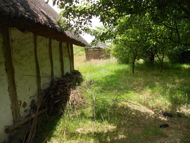 DSCN6451 bw farm